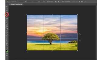 Как обрезать изображения в фотошопе