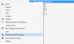 Как использовать CefSharp (Chrome встроенный фреймворк c #) в приложении Winforms